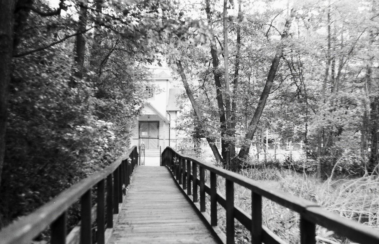 Bridge over swamp by Molot