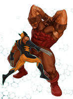 WOLVERINE WEDNESDAY - 27 by reau