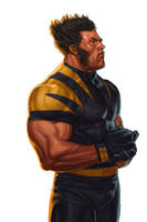 WOLVERINE WEDNESDAY - 38 by reau