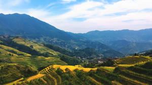 Longshi - Tiantou Village Rice Terrace