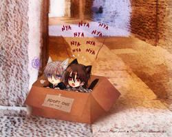 Throaway kitties Zero + Kaname by Sagakure