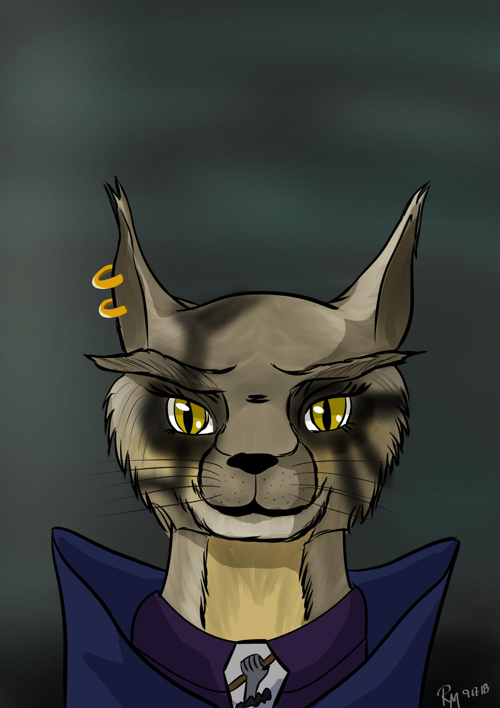 Tabaxi Grave Domain Cleric by lilwolfe006 on DeviantArt