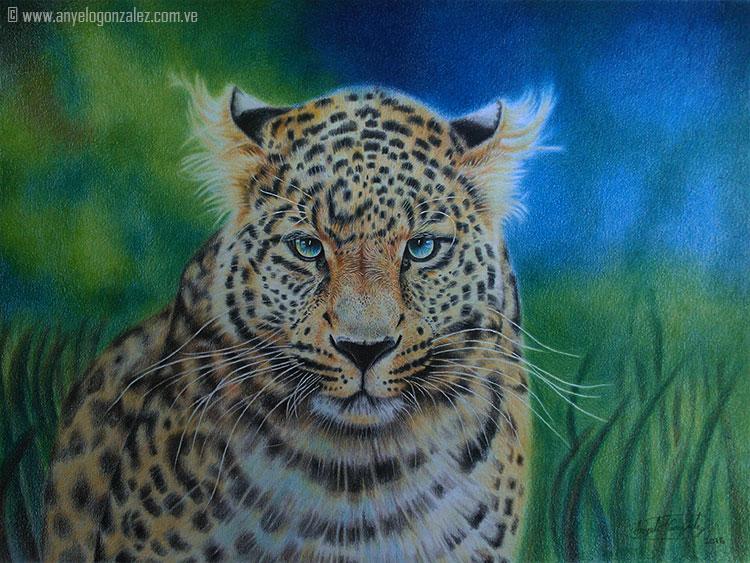 Panthera pardus by AnyeloGonzalez
