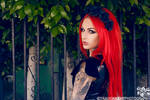 Cervena Fox 5