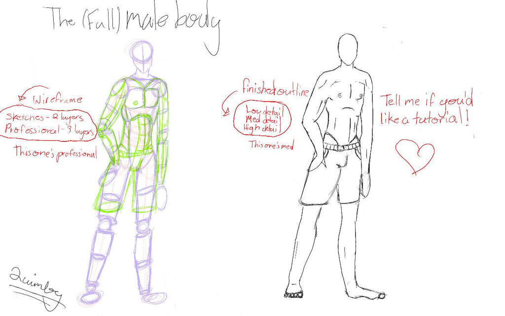 The Male Body With Layout Read Desc By Justalittlebitcooler On