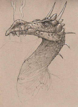 Smaugust #6