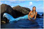 Mermaid on the rocks 2 by wildplaces