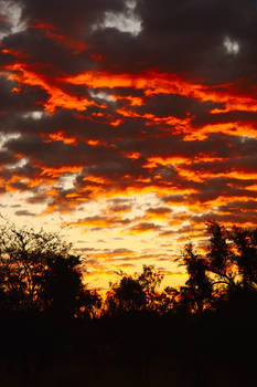 Purnalulu sunrise 2