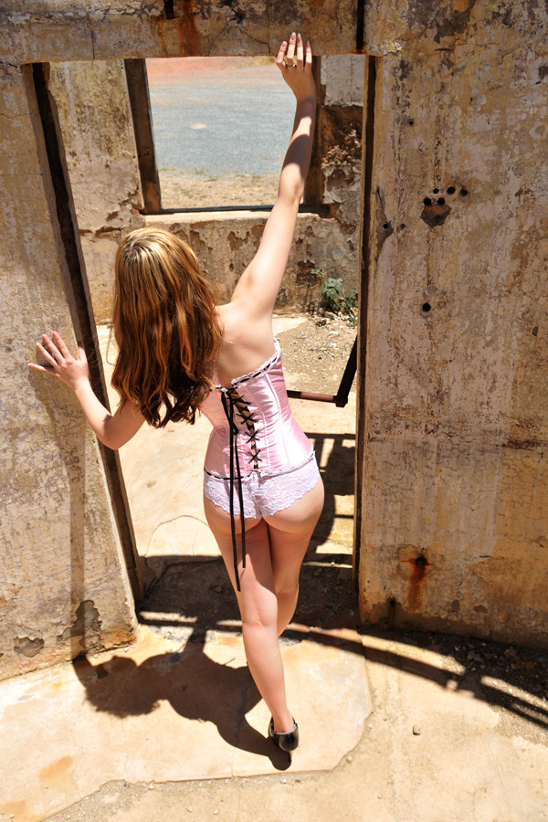 Monday - pink corset back by wildplaces