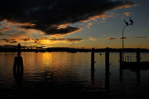 Waterfront sunset 2 - Port Macquarie by wildplaces