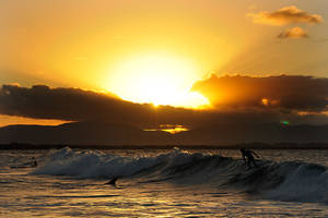 Surfing in sunset light 2 by wildplaces