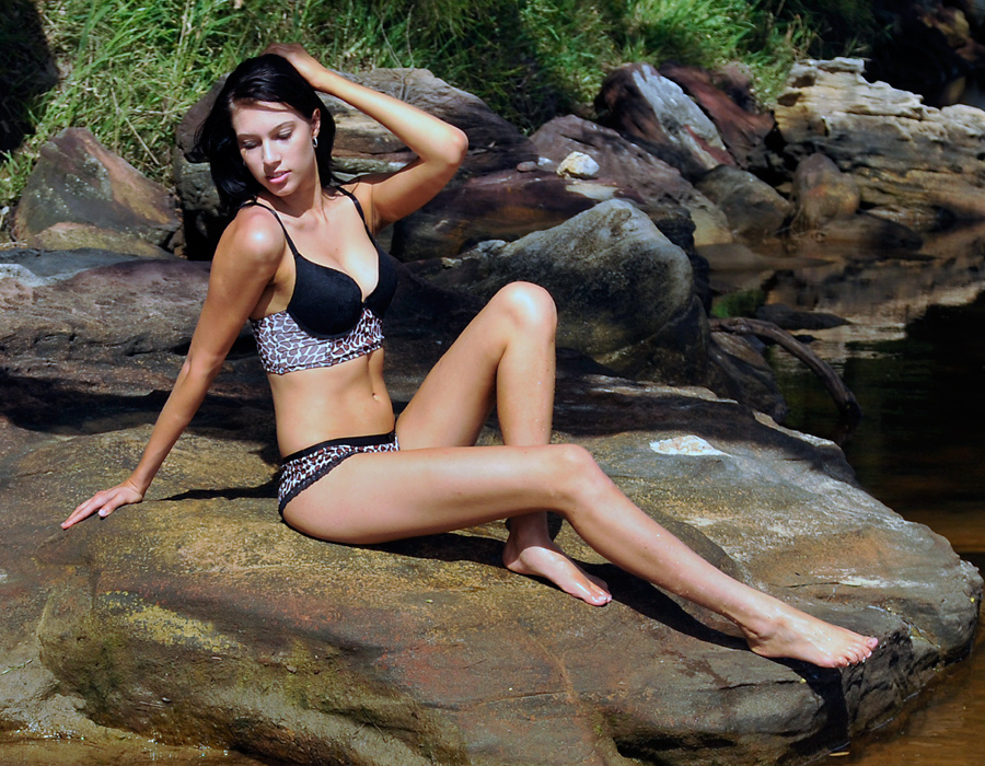 Teigan - leopard on rock 1 by wildplaces