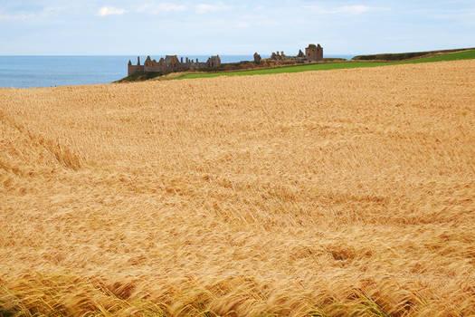 Dunnottar Castle ruins 1