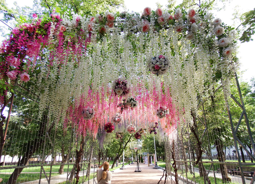 Flower curtain 1 - Moscow by wildplaces