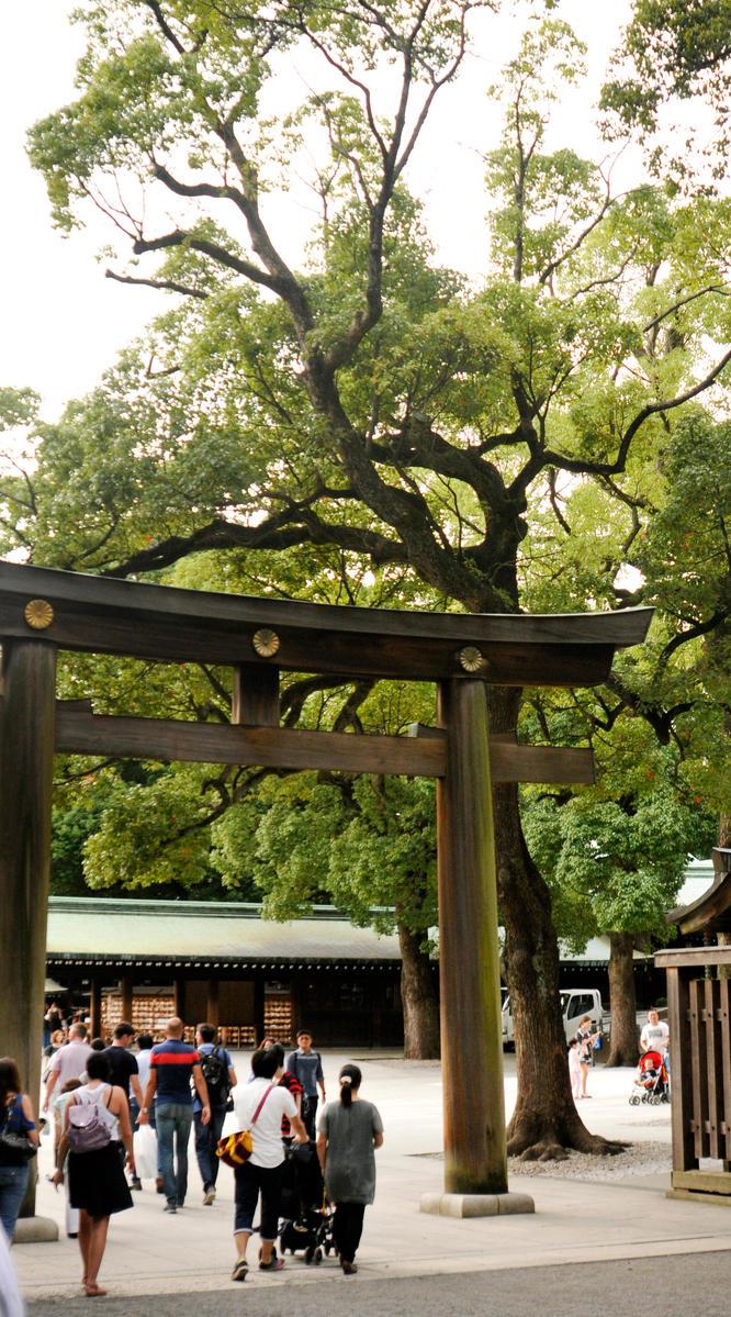 Meiji Shrine 1 - Tokyo by wildplaces