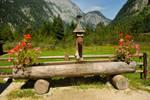 Water trough 1 - Konigsee, Germany