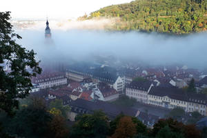 Heidelberg mist 1 by wildplaces