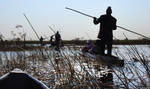 Mokoro silhouette 1 - Okavango Delta by wildplaces
