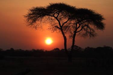 Sunset at Elephant's Eye 1 - Zimbabwe by wildplaces