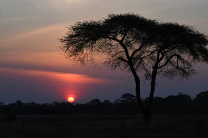 Sunset at Elephant's Eye 4 - Zimbabwe by wildplaces