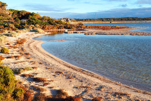 Lake Herschel 1, Rottnest Island by wildplaces