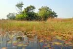 Okavango Delta 1 - Botswana by wildplaces