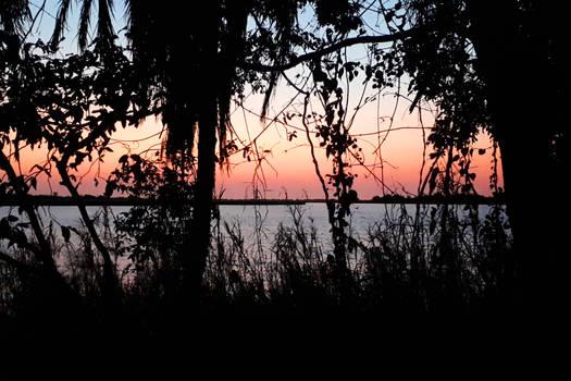 Jungle sunrise 1 - Botswana