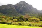 Kirstenbosch 1 - South Africa