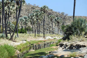 Stream in Damaraland 2 by wildplaces