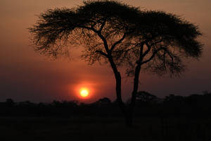 Sunset at Elephant's Eye 5 - Zimbabwe by wildplaces