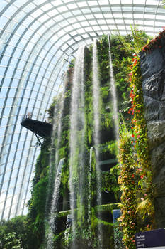 Cloud Forest waterfall 1 - Singapore