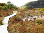 Walking Mt Hartz - 2, Tasmania by wildplaces