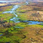 Botswana revisited - flying over Okavango 3