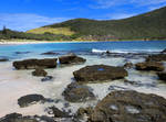 Lord Howe Island - Ned's Beach 4