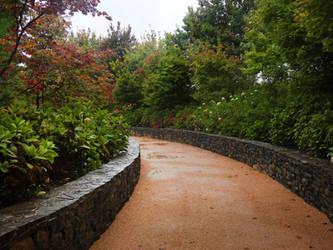 Mayfield Garden, Oberon - 5