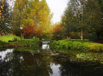 Mayfield Garden, Oberon - 6