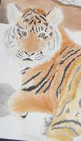 Tiger by Badbrowneyes