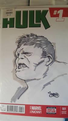 Hulk sketch cover