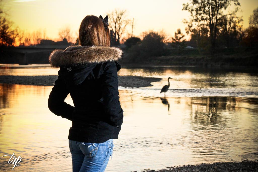 Bird Watching by LuminatX