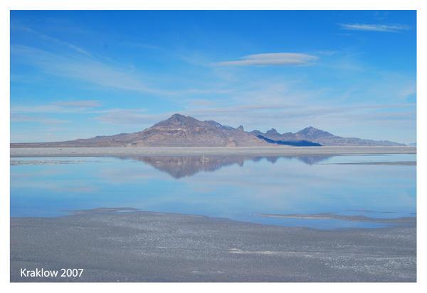 Salt Flats Oasis by krakpics