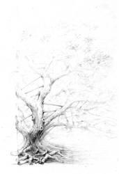 Tree by AlexKaiser