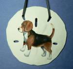 Beagle Sand Dollar Ornament