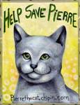 Help Save Pierre