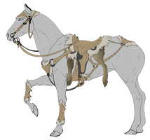 HORSE TACK SALE {closed} (please read)