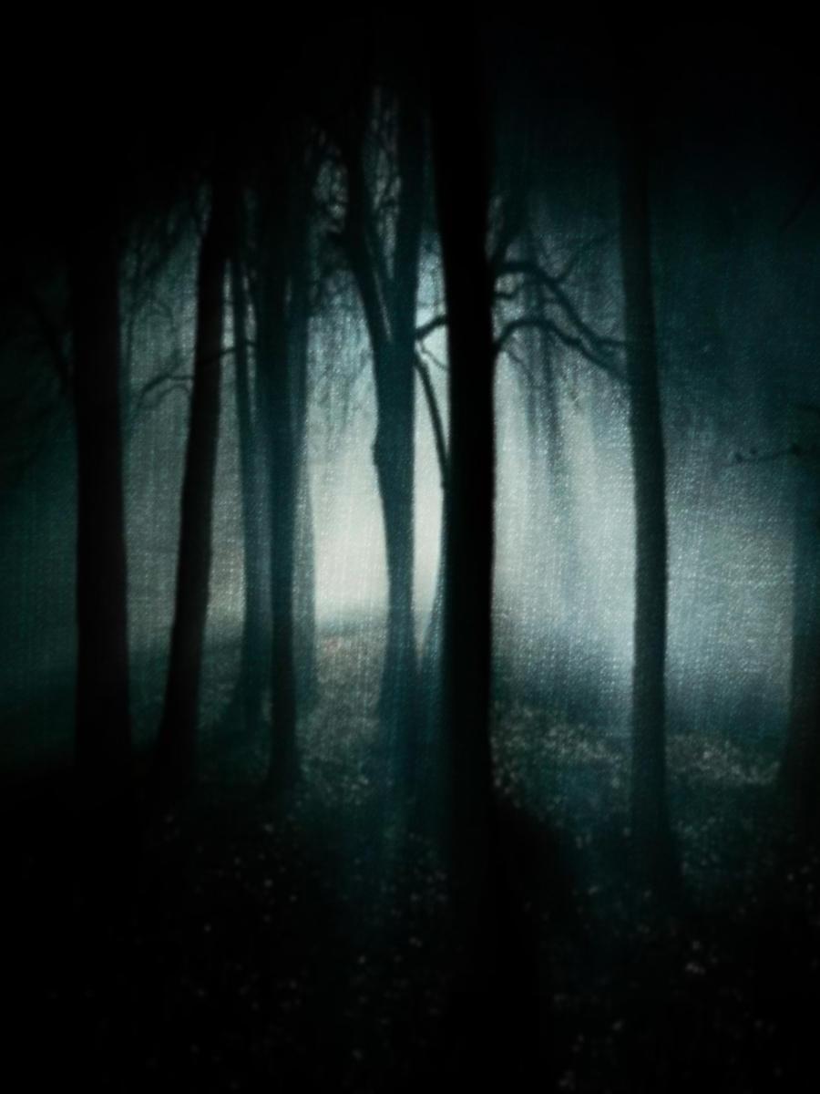 Http Dark Natured Deviantart Com Art Dark Nature 175079879
