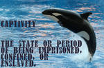 The definition of captivity