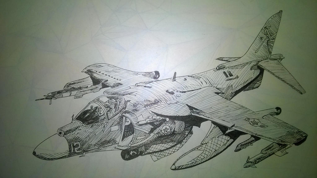 Harrier by Moray-orca