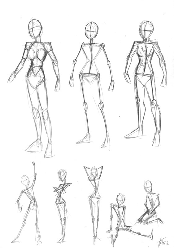 Female Body Anatomy by DerangedMeowMeow on DeviantArt