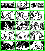 Sonic Adventure 2 VMU Displays