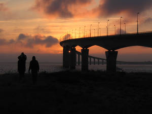 the bridge bis